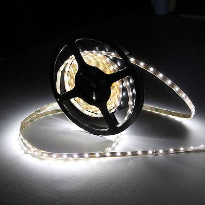Tira LED Blanca 5 metros [TLB1]