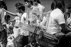 AFB14-Delhi-028