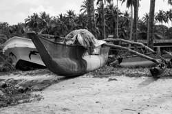 AFB15-Sri Lanka-0049