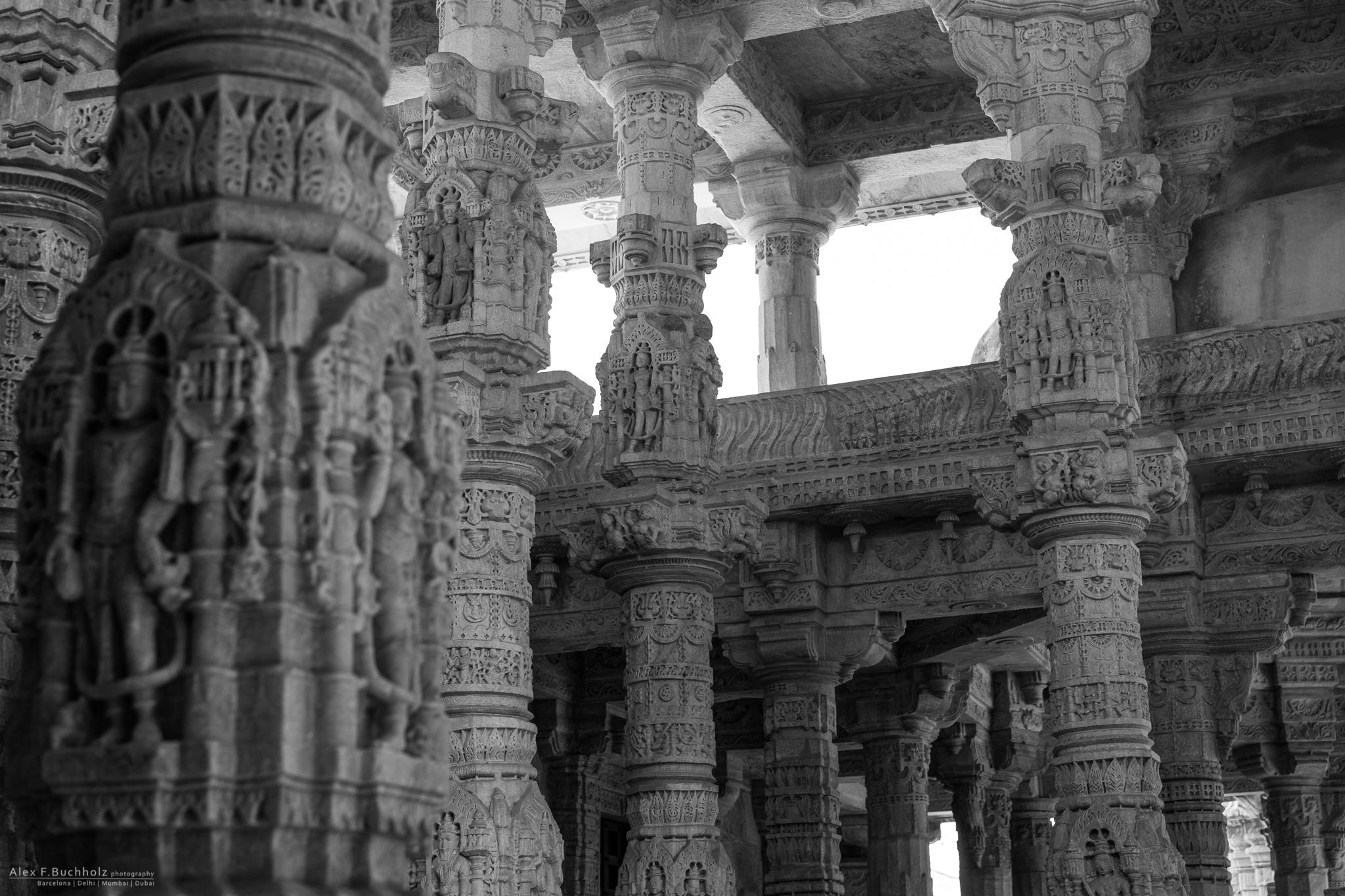 AFB15-Udaipur-0081