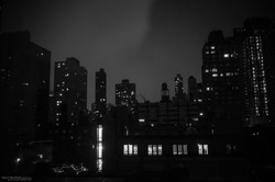 AFB16 New York-2196