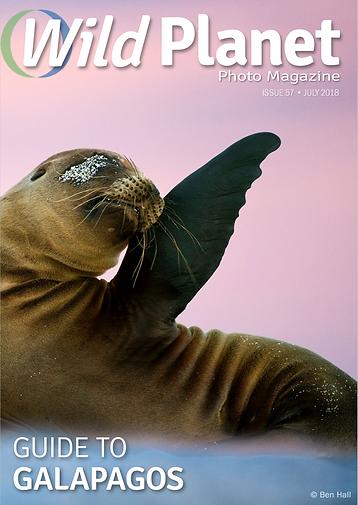Alex F Buchholz in Wild Plantet Photo Magazine