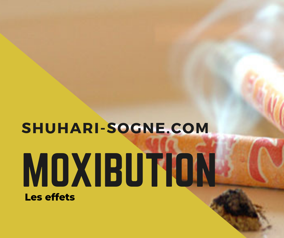 Blog Shuhari-Sologne La moxibution