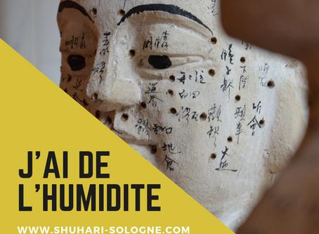 LE CONCEPT D'HUMIDITÉ EN MÉDECINE CHINOISE
