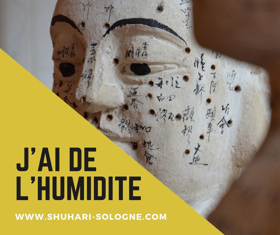 Blog Shuhari-Sologne- j'ai de l'humidité