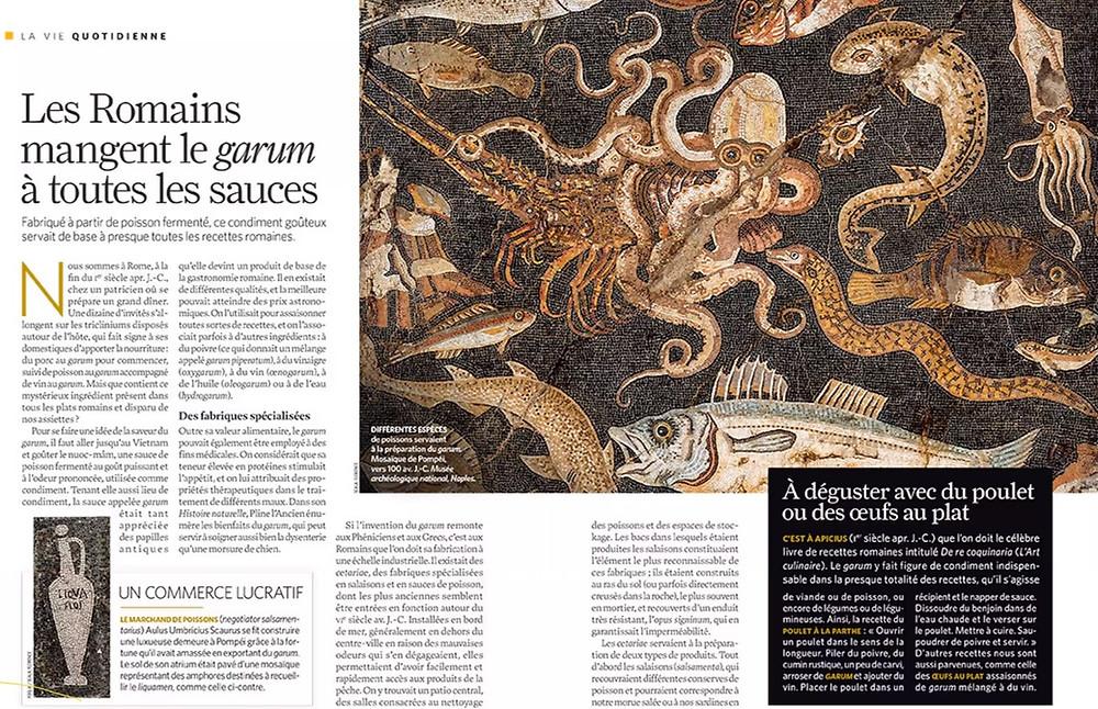 Le Garum -shuhari Sologne.com