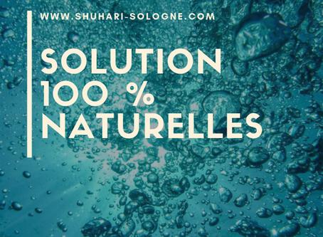 Solution 100 % naturelles pour filtrer l'eau du robinet