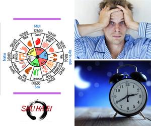 Blog Shuhari-Sologne Tu te réveilles toujours à la même heure pendant la nuit !