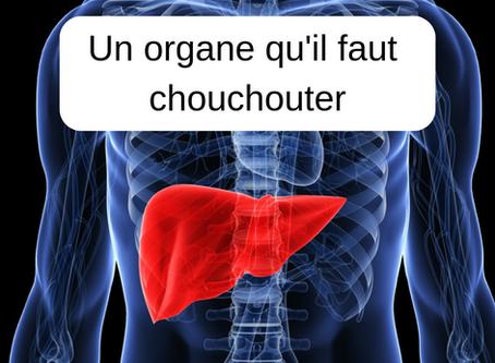 Un organe qu'il faut chouchouter