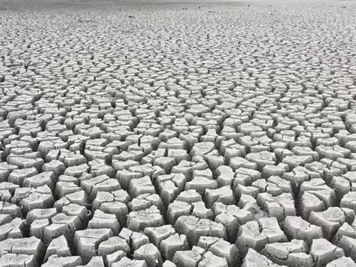 La tierra tiene sed