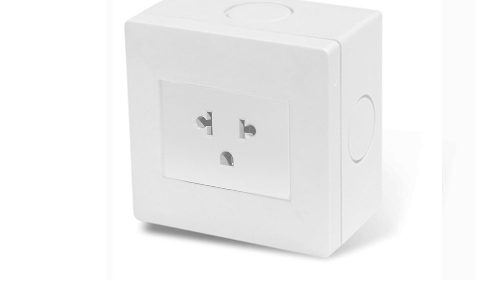 Caja Exterior IP40 + 1 EuroAmericano