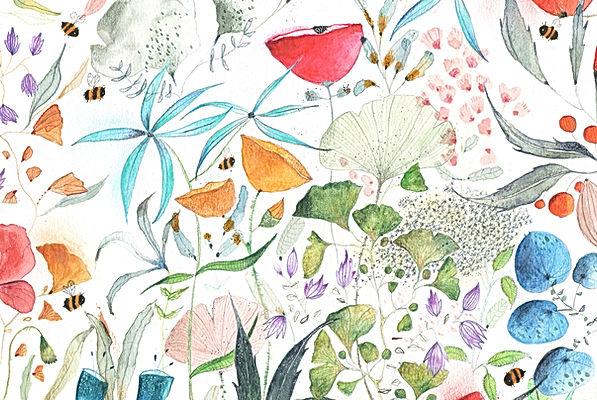 plants botanical flowers bloemen natuur nature natuurtekening flora bekking en blitz post card kaart prentenboek picture book childrens book kinderboek