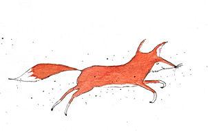 happy fox fox wildlife sprookje fairy tale childrens book picture book prentenboek kinderboek illustrator illustration kidlit illustratie birth announcement card geboortekaart