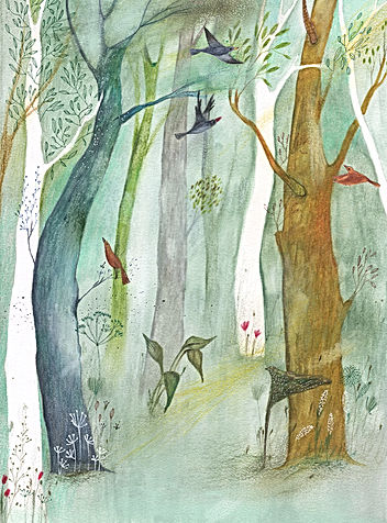 groei en bloei illustratie tekening waterverf botanisch botanical woods birds illustration drawing magazine