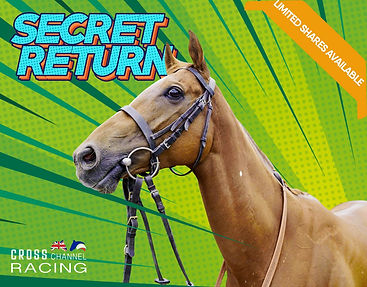 Secret Return shares available.jpg.jpeg