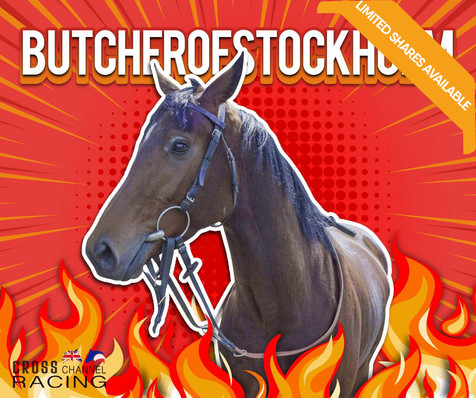 ButcherOfStockholm Limited Shares Availa