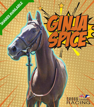 Ginja Spice Shares available.jpg