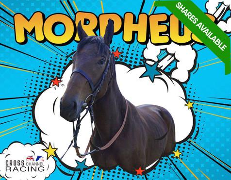 Morpheus shares available.jpg