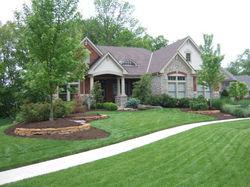 Our Lawn Management Programs