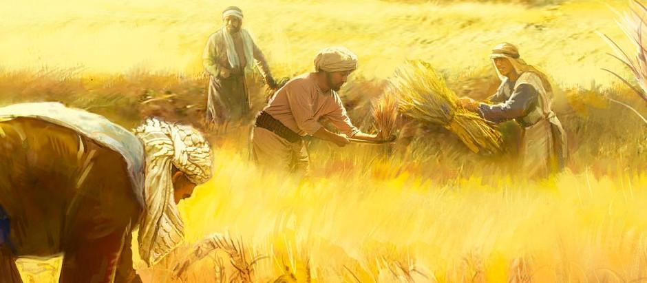 Jesucristo es paciente y rico en misericordia
