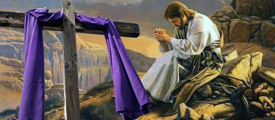 El camino de la conversión y la reconciliación