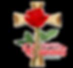 WhatsApp Image 2020-01-21 at 10.12.32 PM