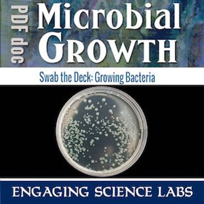 Bacteria: Growing Cultures in Petri Dishes from Classroom Surfaces