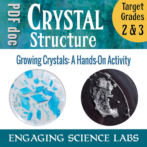 Rocks and Crystals: Grow Mineral Salt Crystals and Study their Shapes