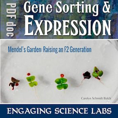 Mendelian Genetics and Heredity: Raising & Crossing Generations of Fast Plants®
