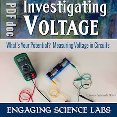 Electric Circuits Activity—Measuring Voltage in Circuits