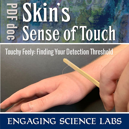 Nerves Study: Sense of Touch, Finding Your Detection Threshold