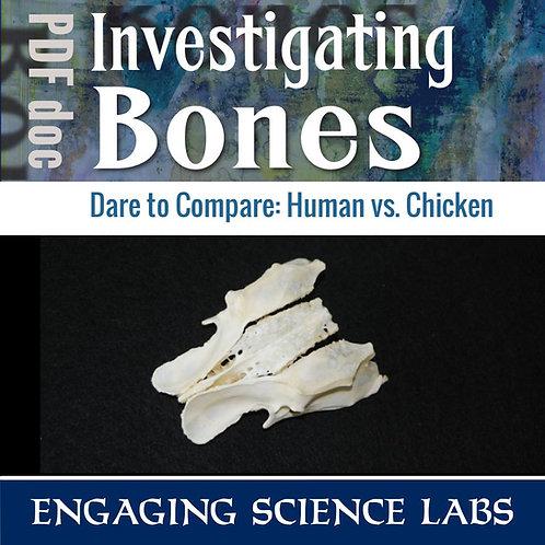 Human Body: Skeletal System Activity: Human Bones Compared to Chicken Bones