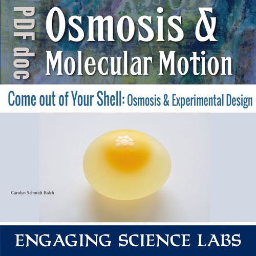 Diffusion and Osmosis Lab: Molecular Movement Through a ...