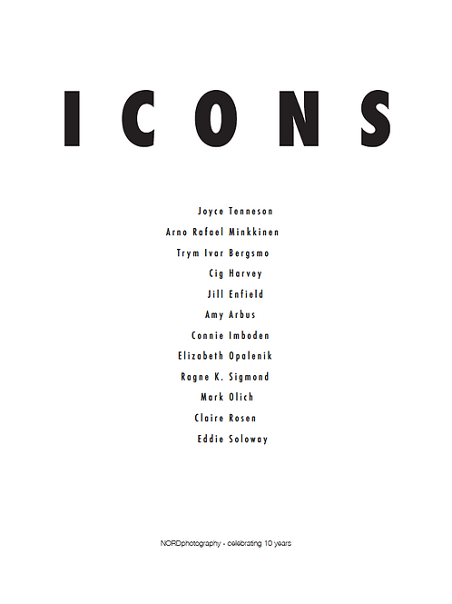 ICONS - catalogue/ booklet from exhibit