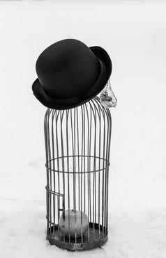 Torunn Skotnes Magritte vs 1
