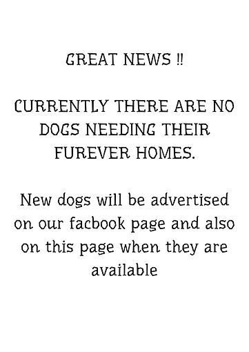 CURRENTLY THERE ARE NO DOGS NEEDING THEI