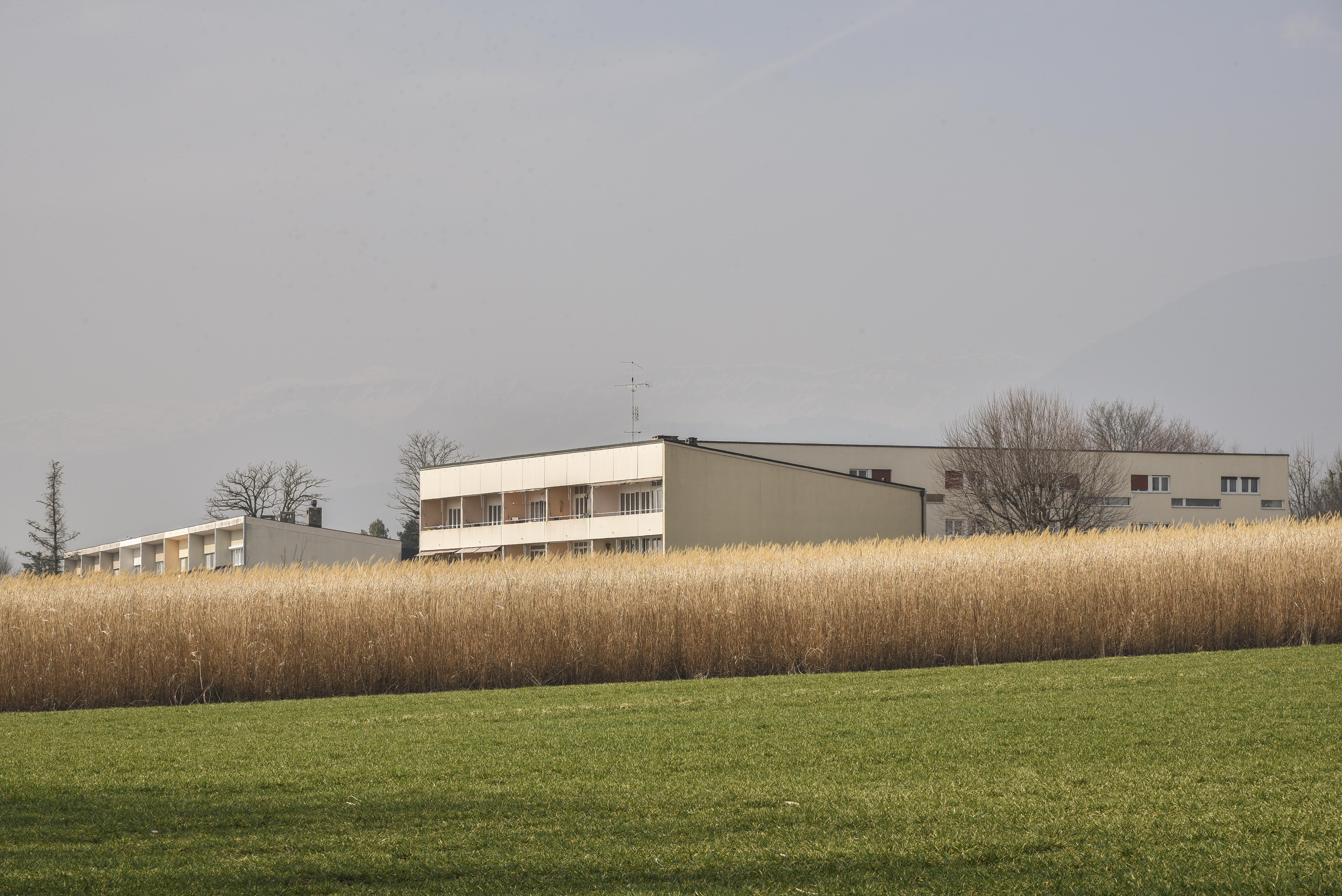Habitation, Crassier