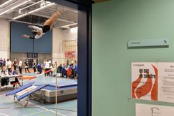 Master de gymnastique