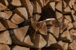 Sterre de bois, Commugny