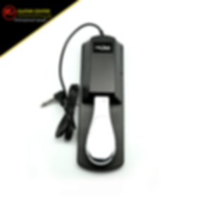 Fzone SP-1 Sustain Pedal (111123).png