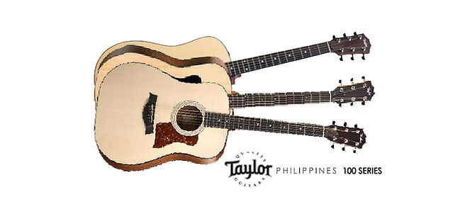 Taylor Cover Photo 100 series.jpg