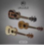rj ukulele.PNG