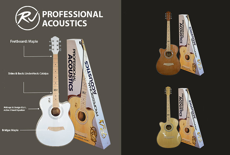 pro acoustics.jpg