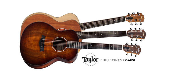 Taylor Cover Photo 2.jpg