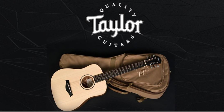 Taylor Guitar.JPG