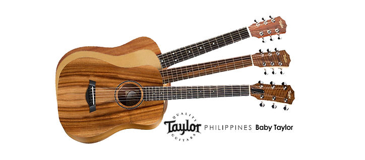 Taylor Cover Photo 3.jpg