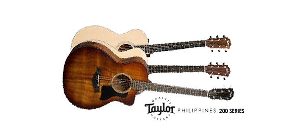 Taylor Cover Photo 200 SERIES.jpg