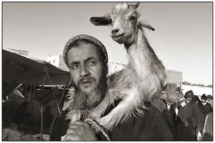 Berber Shepherd, Souk Had-Raa
