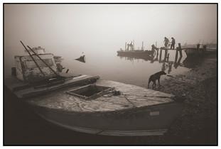 Fog Shift