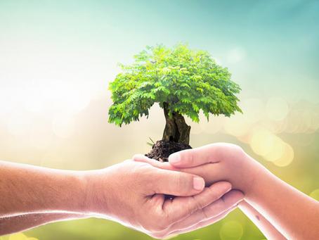 An impartial CSR audit will strengthen your brand